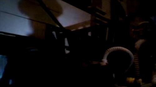 The Shadows in Gotham